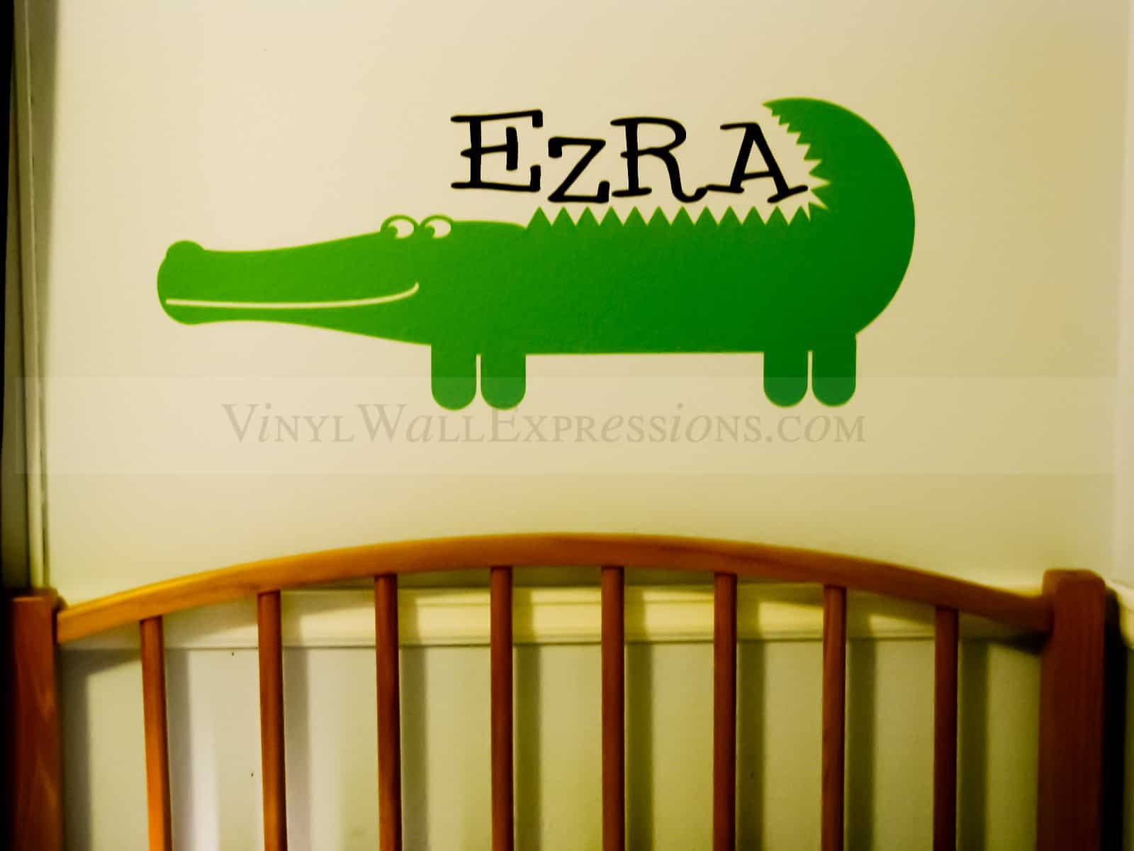 dinosaur boys girls vinyl wall art room decor
