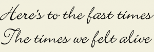 The Last Times We Felt Alive Vinyl Wall Quote