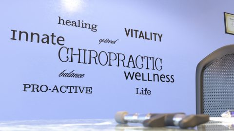 Chiropractic Descriptive Words Wall Decal Vinyl Wall Lettering Custom Color Choice