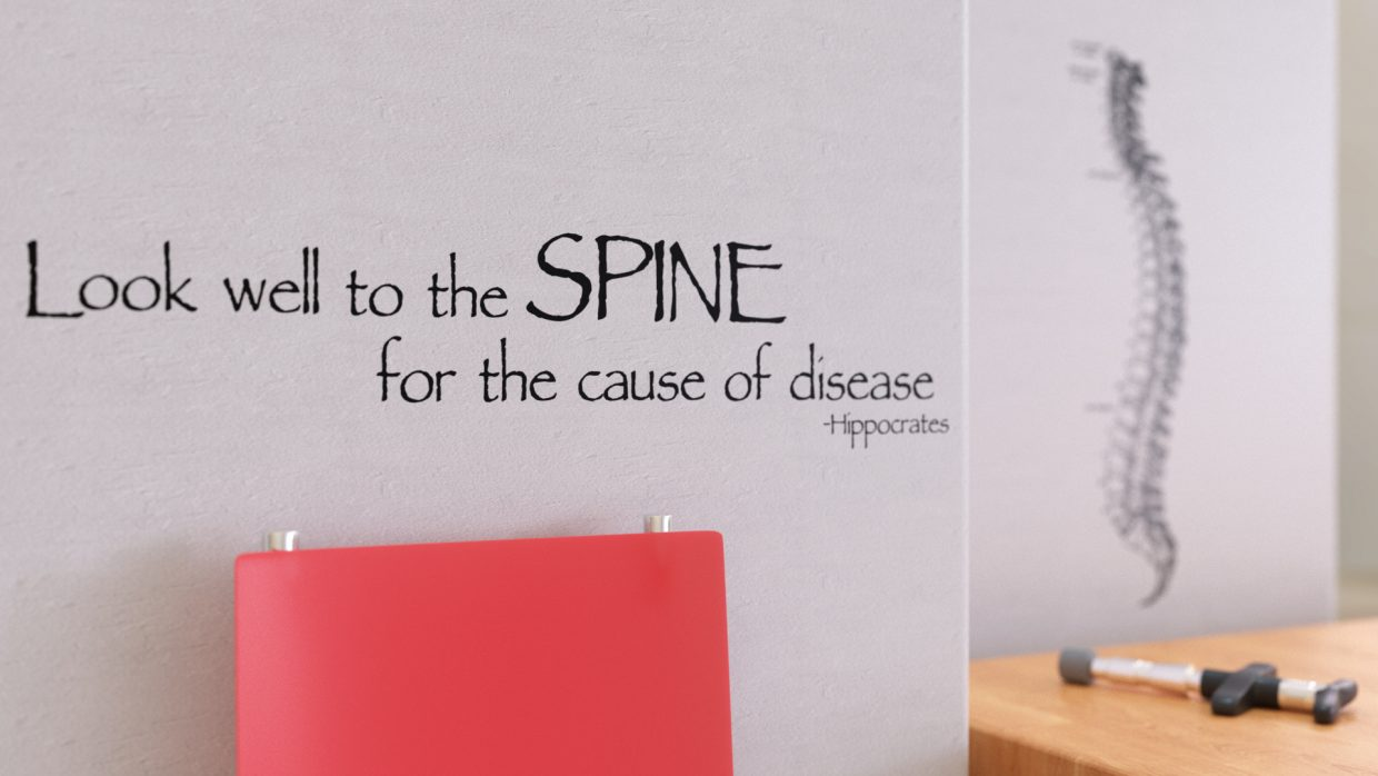 Chiropractic Business Custom Wall Decal